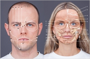 Apologise, but, facial coding system