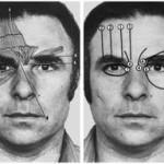 ekman-facial-muscles