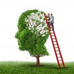 14118126-cervello-e-memoria-visita-medica-con-un-medico-su-una-scala-rossa-arrampicata-alta-per-ispezionare-u
