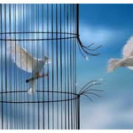 psicoterapia-cognitivo-comportamentale