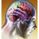 terapia-cognitivo-comportamentale