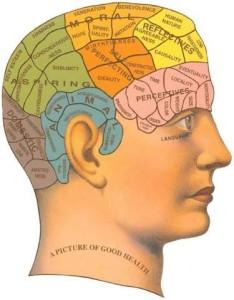 phrenology