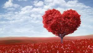 psicologia-amore