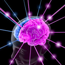 cervello-autismo