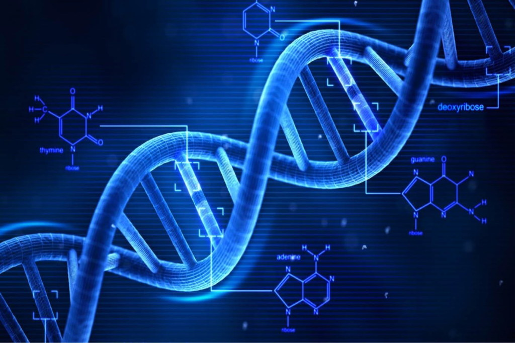 genetica-bipolare