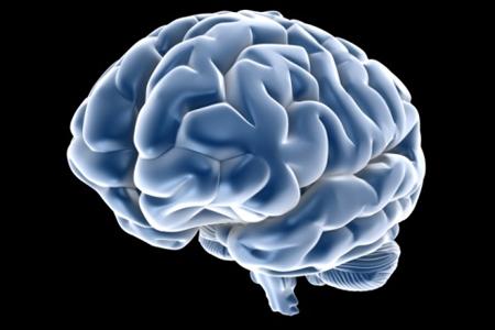 cervello-trauma