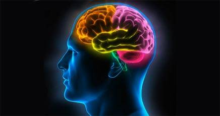 amnesia cervello