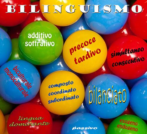 image classif biling web
