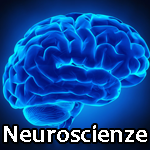 !neuroscienze