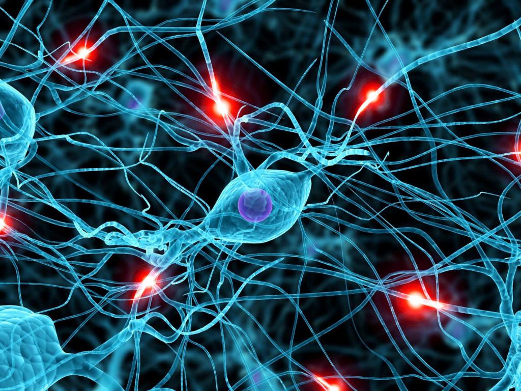 cervello trauma