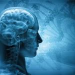 psicologia intelligenza