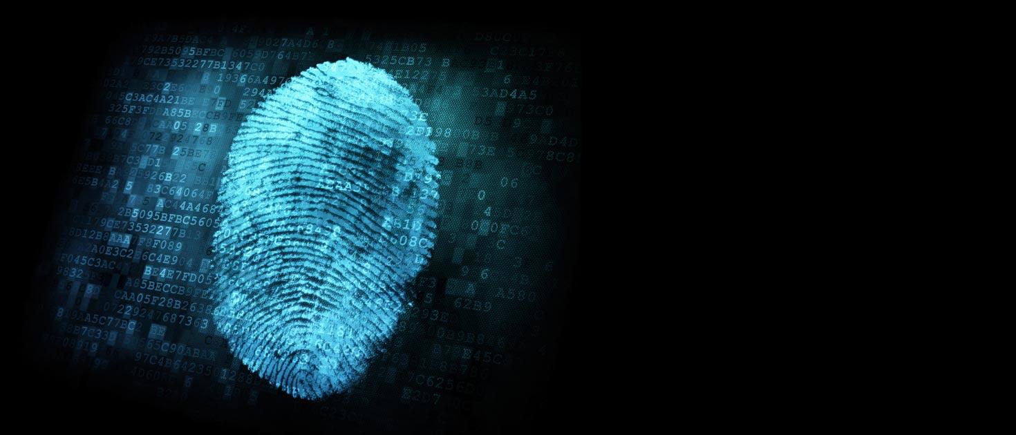 criminal profiling cybercrime