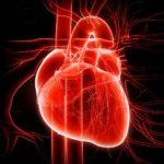psicologia-cuore-vita